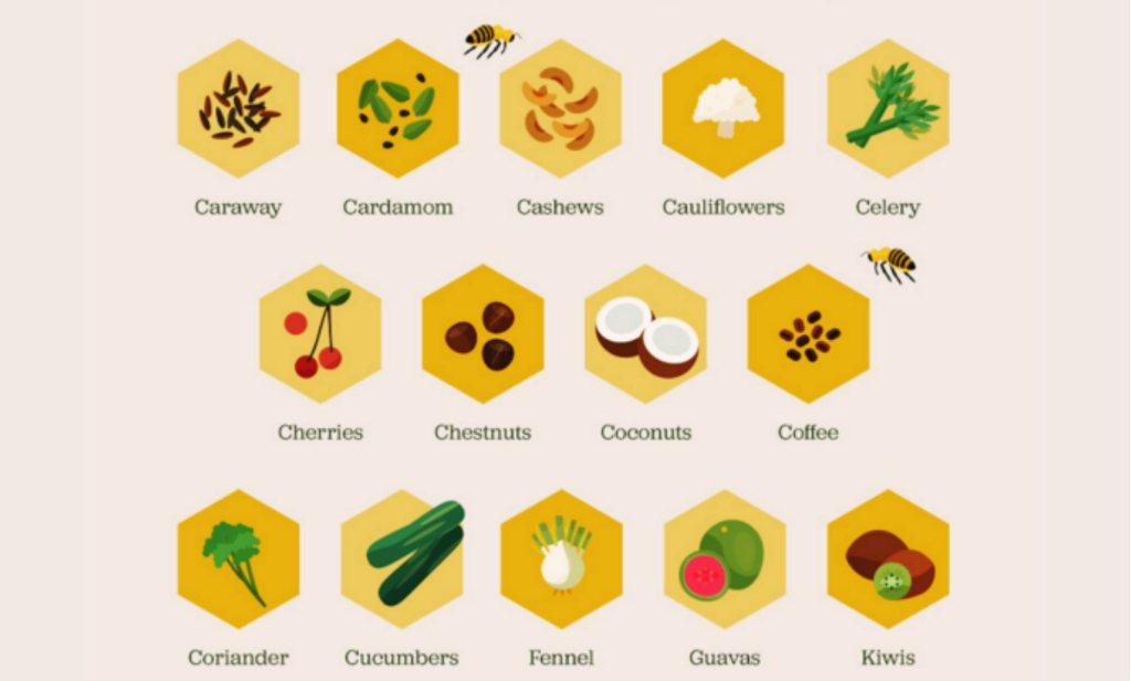 eten bijen honing